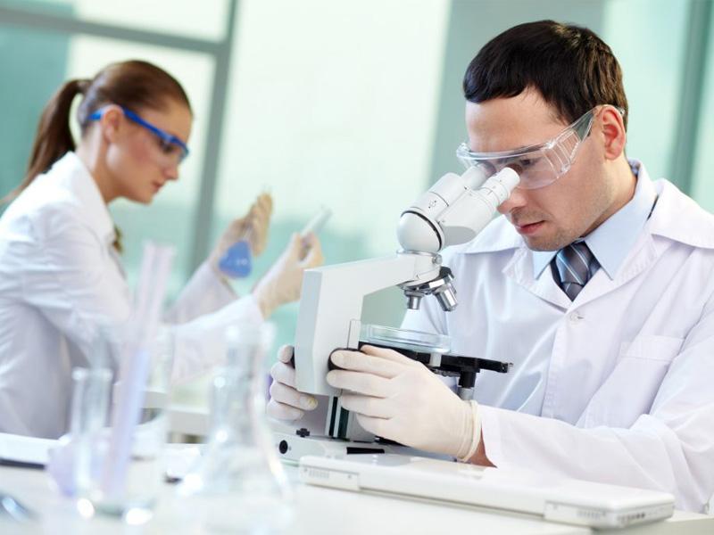 Microscopia. Los efectos terapeúticos de CELLFOOD